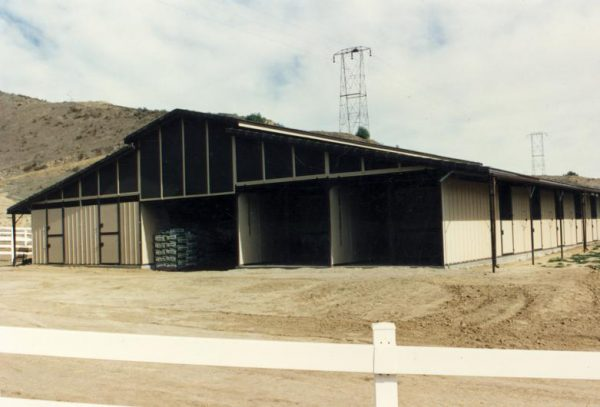 raised-center-aisle-ring-o-steel-horse-barn-with-double-side-stalls